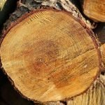 Parkhall Timber Products